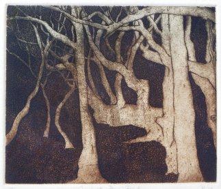 "ZB Tanja Riese ""Spreading Figs"" 11 x 32 cm"