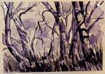 Alicia Katchaturian - Gum tree study  2